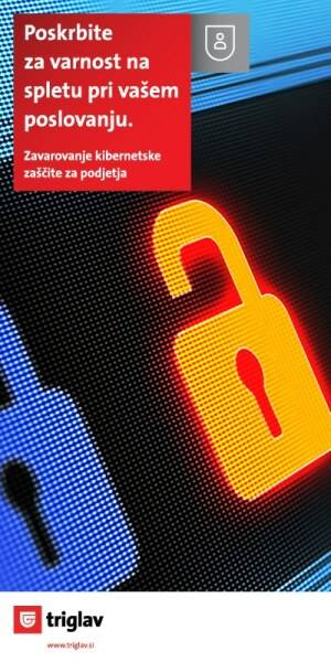 Triglav Cyber